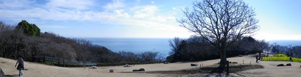 吾妻山から相模湾
