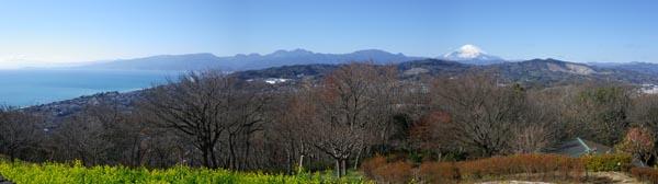 吾妻山から箱根と富士山